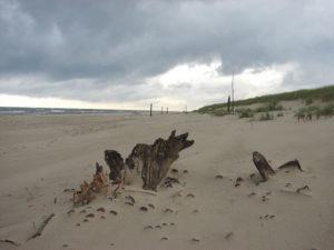Plaża w Rowach od strony SPN