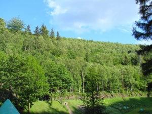 Góry Sowie - przed Riese
